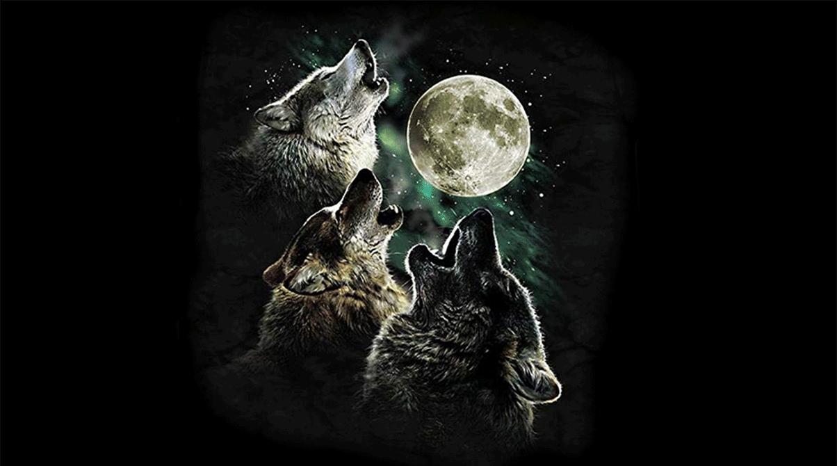 The Mountain Men's Three Wolf Moon